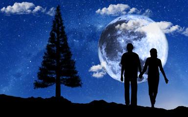 Wall Mural - novios paseando bajo la luna