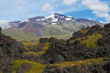 Lavafeld am Sneafellsjökull (Island)