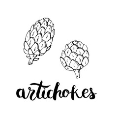 hand drawn graphic vegetables artichokes with handwritten wor