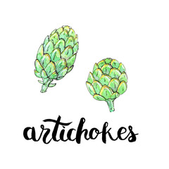 hand drawn watercolor vegetables artichokes with handwritten wor