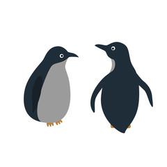 Vector cartoon style illustration of penguins.