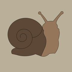 vector ornament snail creeping grass cartoon graphic