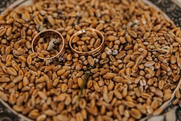 rings in wheat