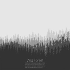 Vintage forest design template. Vector. Coniferous forest silhouette template. Woods illustration
