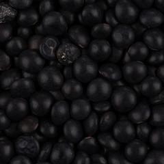 black lentils close up
