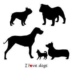 dog, animal, white, puppy, pet, vector, black