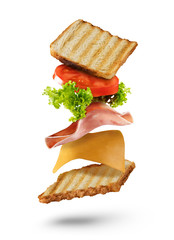 Sandwich with flying ingredients on white background