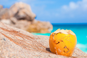 picture of fresh coconut juice on tropical beach. La Digue island, Seychelles