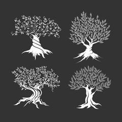 Olive trees silhouette icon set