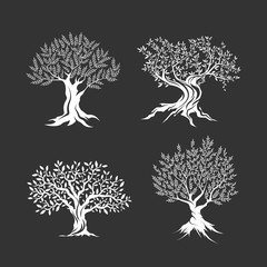 Olive trees silhouette icon set isolated