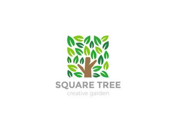 Wall Mural - Tree Logo square design vector Organic Natural Plant Garden icon
