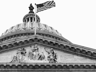 Washington DC Capitol dome close up detail in black and white. Isolated with copy space