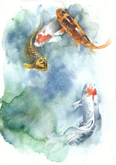 Koi fish watercolor painting isolated greeting card on white background