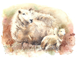 Sheep with lamb watercolor illustration greeting card isolated on white background