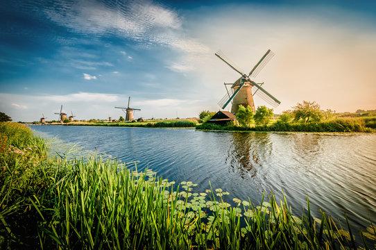 Historians Dutch windmills near Rotterdam