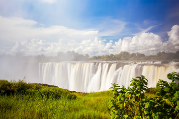 Wall Mural - Victoria falls through through the mist and spray.  Blue sky and green grass in the foreground.