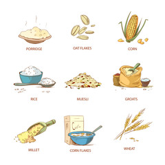 Cartoon ripe ears of cereals, countryside plants vector set