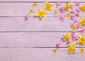 pink flowers on pink wooden background