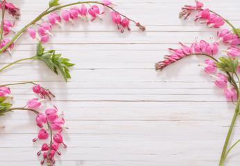 Bleeding heart flowers on white wooden background