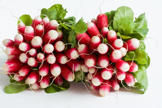 Bottes de radis sur fond blanc