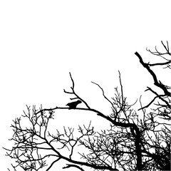 Vector black raven silhouette of a bare tree.