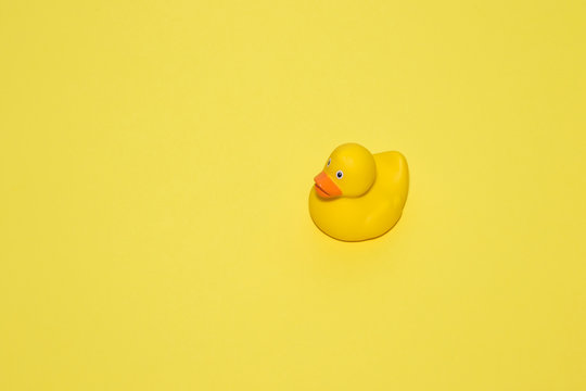 one yellow rubber duck on yellow background