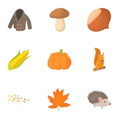 Season of year autumn icons set, cartoon style
