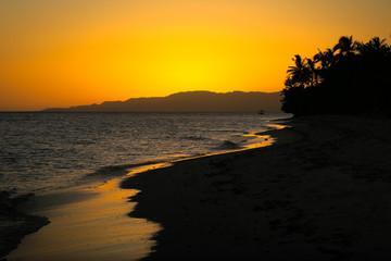 Golden Beach Sunset in the Tropics
