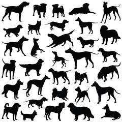 Dog collection - vector silhouette