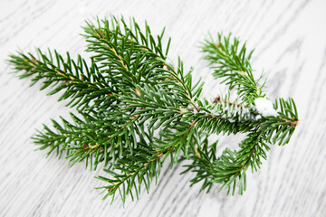 Christmas fir tree branch for decorate on the wooden background. Winter ideas.