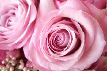 Pink roses in flower arrangement