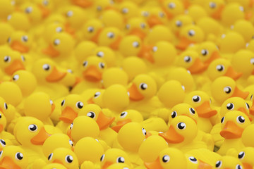 yellow toy duck floating in swimming pool