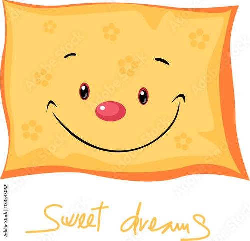 Cute Pillow Illustration :