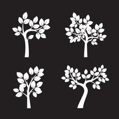 Set White Trees. Vector Illustration.