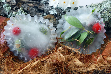 Two icy heart with frozen  inside berries and leaves