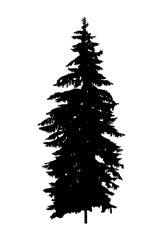 Silhouette of pine  tree (fir) . Can be used as poster, badge, emblem, banner, icon, sign, decor.