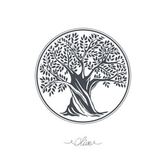 Hand drawn olive tree. Vector sketch illustration