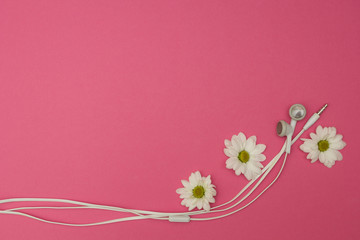 flowers and headphone on the pink background