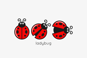 Ladybug Logo Set On White Design Background