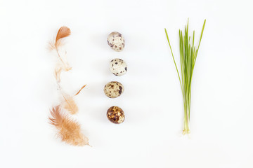 Easter holiday attributes sets. Quail eggs, green shoots sprouted wheat, feathers on white background. Easter holiday eco concept.
