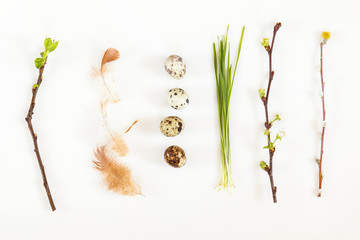 Easter holiday attributes sets. Quail eggs, green shoots sprouted wheat, feathers, cherry and apricot branches on white background. Easter holiday eco concept.