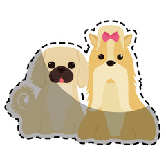 two dog breeds icon image vector illustration design