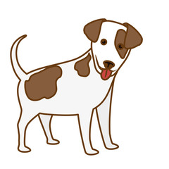cute dog icon over white background. colorful design. vector illustration