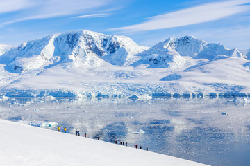 Group of people hiking the snowy mountains, Neco bay, Antarctic