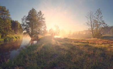 Summer landscape of bright sunrise