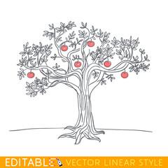 Apple tree drawing. Editable line sketch. Stock vector illustration.
