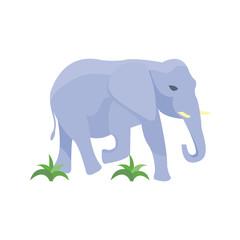 Elephant vector illustration.