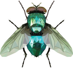 Green Fly triangle