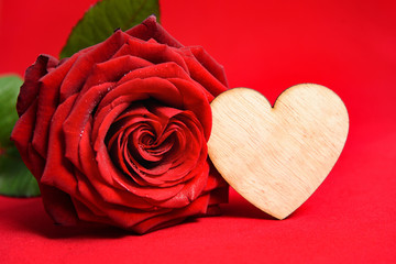 Valentine Red Rose. Heart shaped with copy space