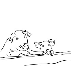 Contour drawing. Pig with piglet.